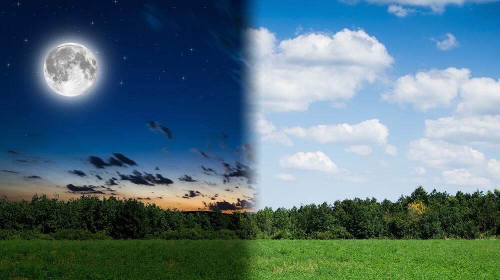 cronobiologia importancia do entendimento ritmos circadianos