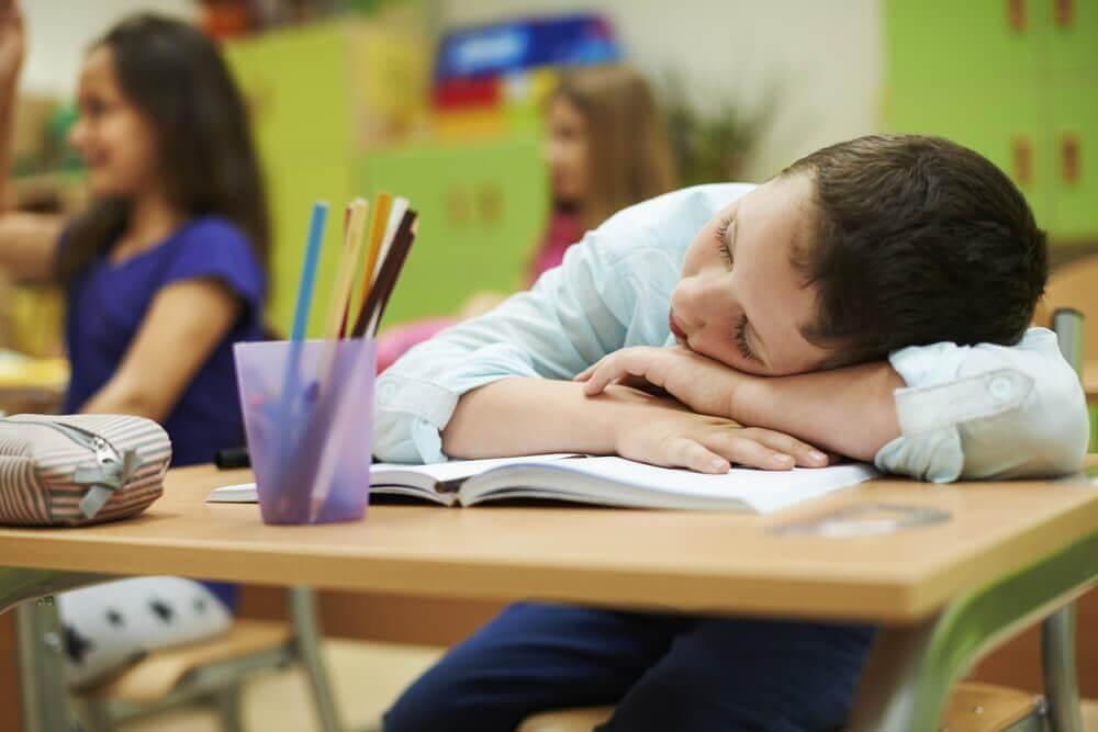 fases do sono como ciclo afeta produtividade
