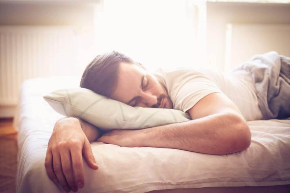 fases do sono rem