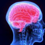 hormonios do sono quais sao importancia beneficios